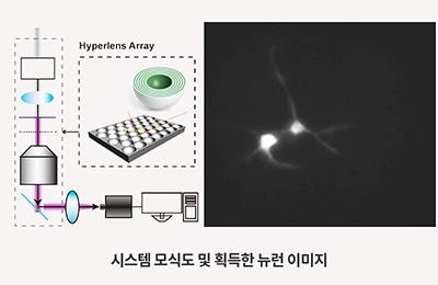 기계・화공 노준석 교수팀, 하이퍼렌즈로 살아있는 뉴런 관찰 최초 성공