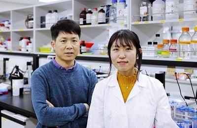 화학 임현석 교수팀, 암 '표적 단백질'만 노리는 '암살자' 분해제