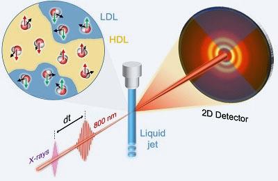 화학 김경환 교수팀, 빛이 밝힌 가벼운 물과 무거운 물